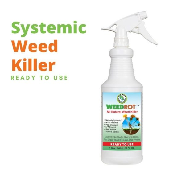 Sierra Natural Science SNS WeedRot All Natural Weed Killer Ready to Use